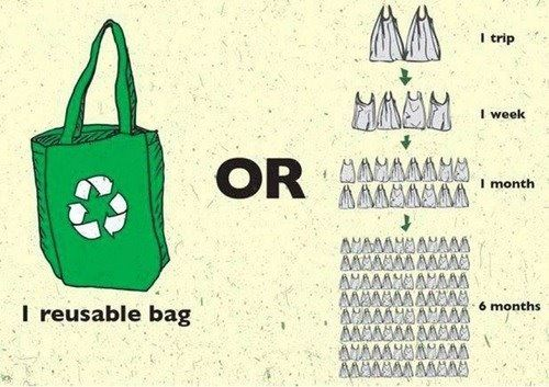 reusable bag infographic