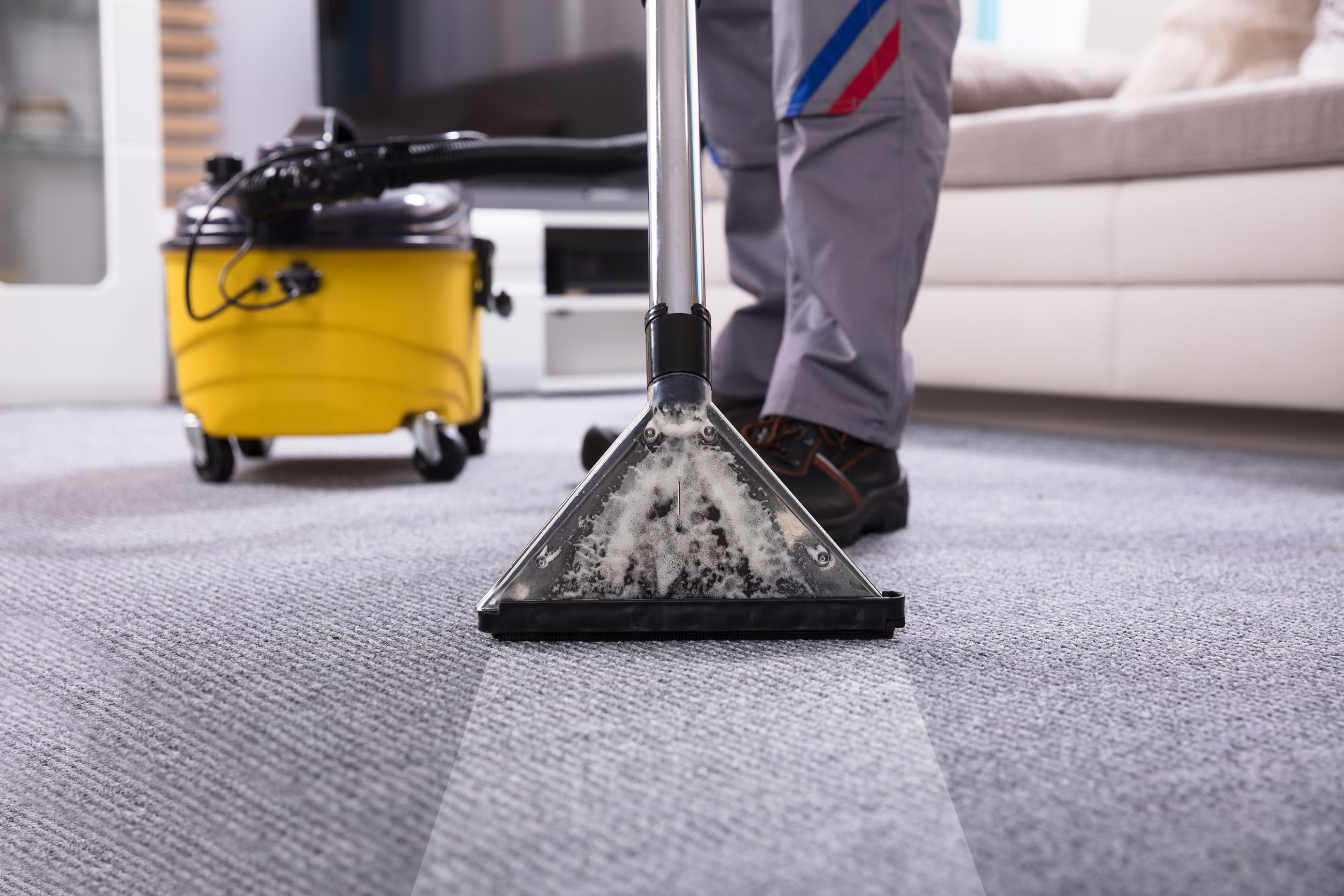 BS CarpetCleaning