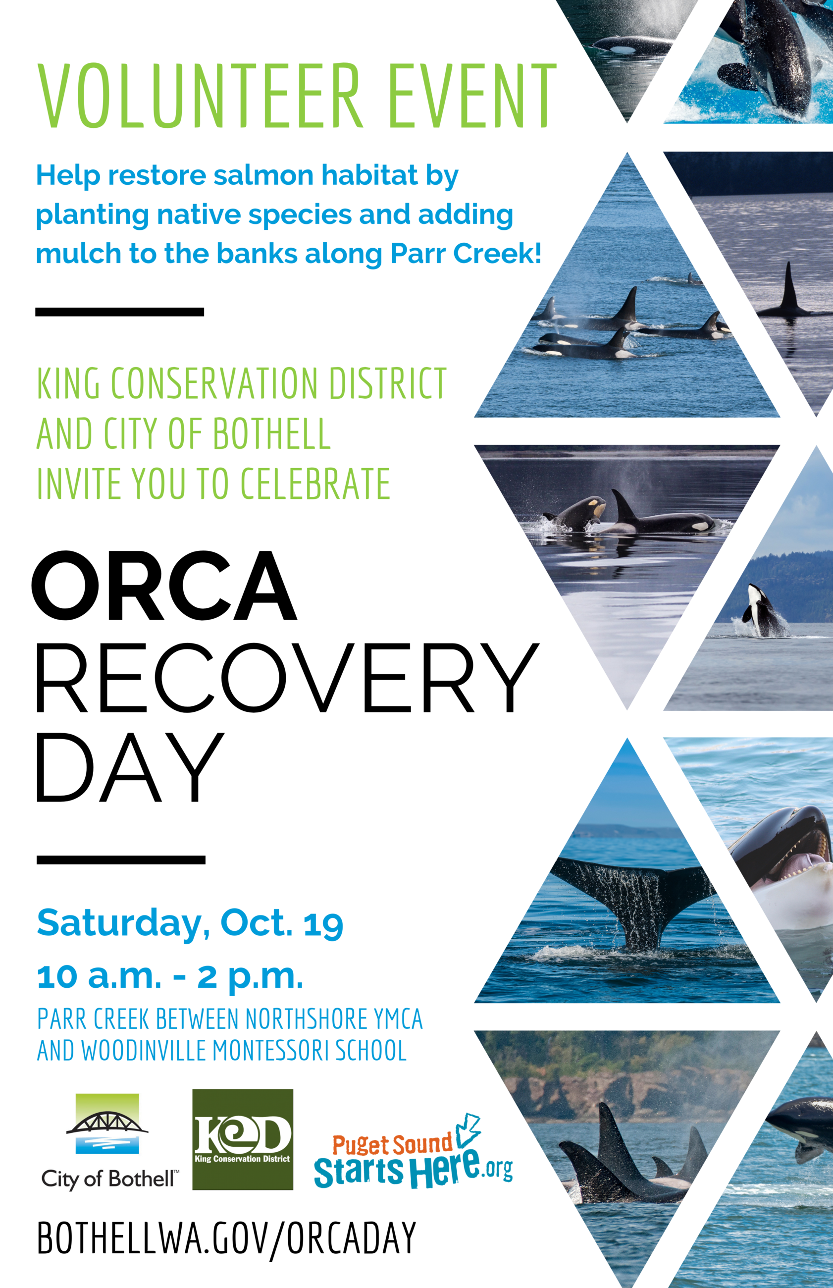 Orca Recovery Day Flyer